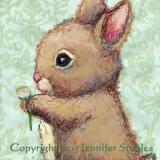 Bunny's Clover
