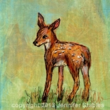 Standing Fawn