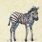Zebra Standing