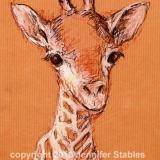 Hello Baby Giraffe!