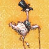 Fancy Gentleman Bird