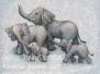 Safari and Zoo Animals