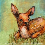 Fawn's Grassy Bed
